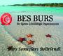 BES Burs: Burs Almaya Hak Kazanan Adaylar Belirlendi