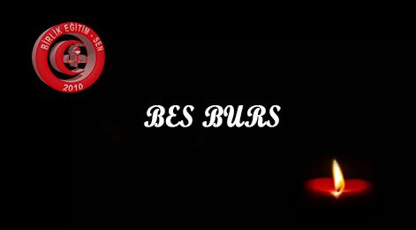 BES BURS Hizmetleri